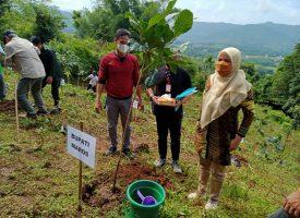 Wakil Bupati Maros Hj Suhartina Dalam Penanam Pohon Dikegiatan Rimbawan Ke 38 Tahun di Kecamatan Tompobulu Kabupaten Maros